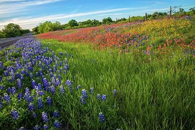 Photograph - Wildflower Wonderlands In The Hill Country by Lynn Bauer