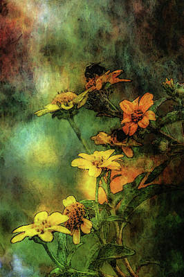 Photograph - Wildflowers And Bee Impression 5673 Idp_2 by Steven Ward