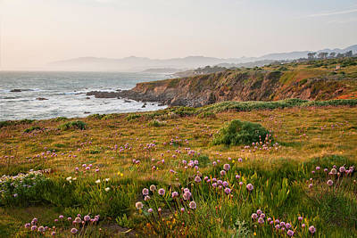 Photograph - Wildflowers And Fog On The Fiscalini Preserve by Lynn Bauer