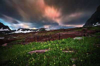 Photograph - Wildflowers And Motion Clouds At Glacier National Park by William Lee