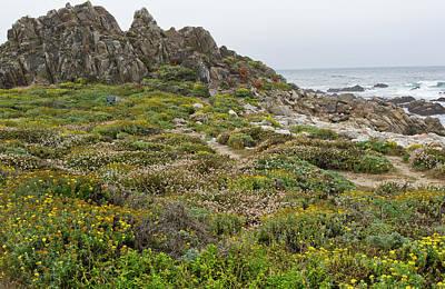 Wildflowers At China Rock - Pebble Beach - California Art Print by Brendan Reals