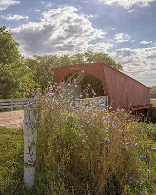 Photograph - Wildflowers At Hogback Bridge by Susan Rissi Tregoning