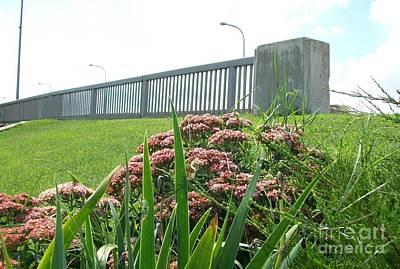 Wildflowers Beside The Bridge Art Print by Marsha Heiken