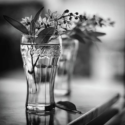 Photograph - Wildflowers Black And Whiite by Laura Fasulo