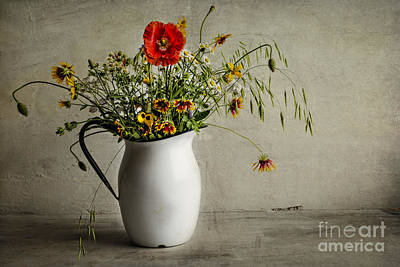 Photograph - Wildflowers by Elena Nosyreva