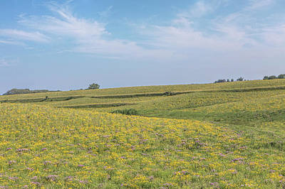 Photograph - Wildflowers In The Loess Hills by Susan Rissi Tregoning