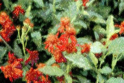 Wildflowers Original by Lyle  Huisken