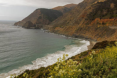 Photograph - Wildflowers Meets The Pacific by Willie Harper