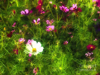 Photograph - Wildflowers - Paint by Kathleen K Parker