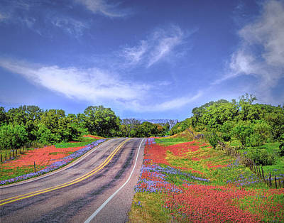 Photograph - Wildflowers The Road To Llano by Michael Ziegler