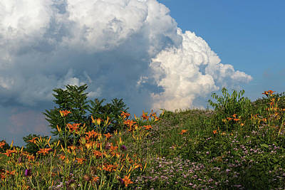 Photograph - Wildflowers Under A Cloud by Bill Jordan
