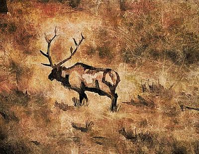 Digital Art - Wildlife  by Kara Evelyn-McNeil