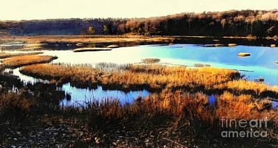 Photograph - Wildlife Preserve by Janine Riley
