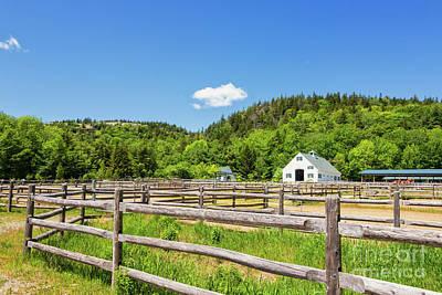 Photograph - Wildwood Farm by Elizabeth Dow