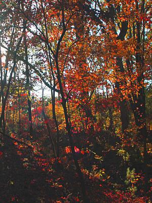 Digital Art - Wildwood Missouri by Dennis Buckman