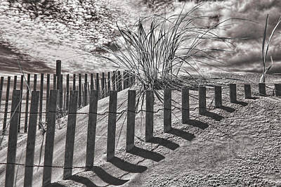 Photograph - Wildwood Seagrass by Fred Moore
