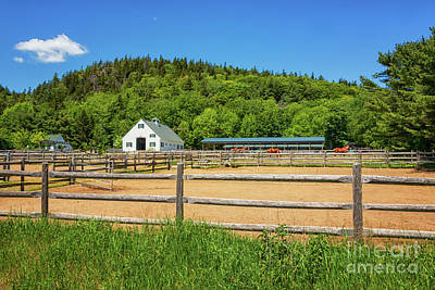 Photograph - Wildwood Stables Of Acadia by Elizabeth Dow