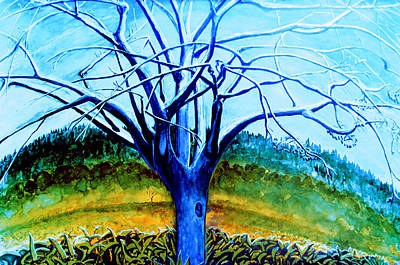 Wiliwili Art Print by Kevin Smith