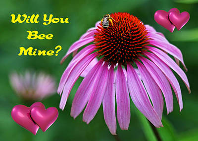 Photograph - Will You Bee Mine by Judy Vincent