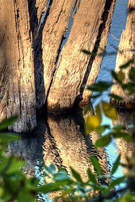Photograph - Willamette River Pilings 3796 by Jerry Sodorff