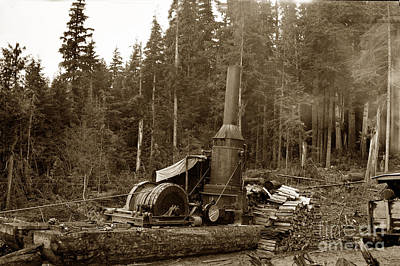 Photograph - Willamette Steam Donkey Logging Circa 1915 by California Views Mr Pat Hathaway Archives