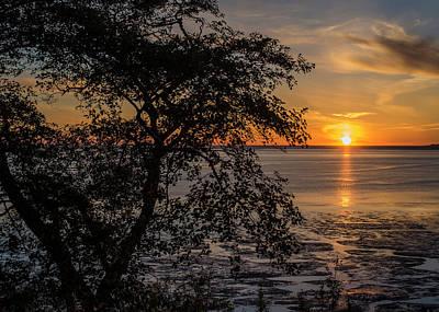 Photograph - Willapa Bay Sunset by Robert Potts