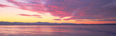 Great Salt Lake Photograph - Willard Bay State Park, Near Great Salt by Panoramic Images