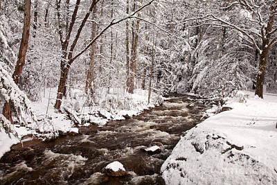 Photograph - Willard Brook 2 by Susan Cole Kelly