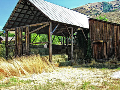 Photograph - Willard Hay Shed by David King