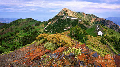 Photograph - Willard Peak by Roxie Crouch