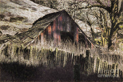 Photograph - Willets Barn by Shirley Mangini