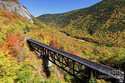 Photograph - Willey Brook Trestle - Crawford Notch, New Hampshire by Erin Paul Donovan