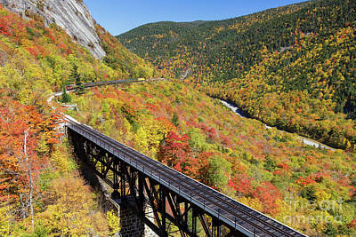Photograph - Willey Brook Trestle - Harts Location, New Hampshire by Erin Paul Donovan