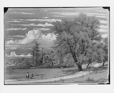 William Rickarby Miller    Willow Tree Harlem Creek New York Art Print