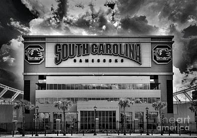 Photograph - Williams Brice Stadium, Sc, Usa by Skip Willits