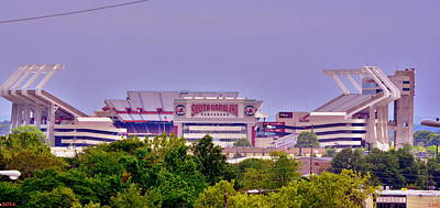 Photograph - Williams - Bryce Stadium by Lisa Wooten