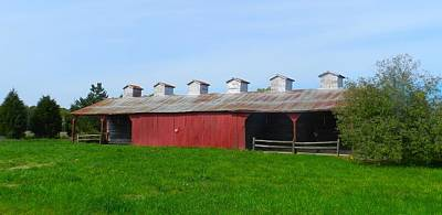 Photograph - Williams Corncrib by Julie Dant