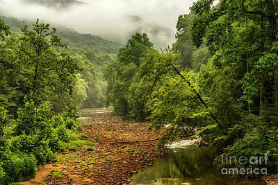 Photograph - Williams River After The Rain by Thomas R Fletcher