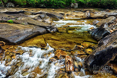 Photograph - Williams River Cascade by Thomas R Fletcher