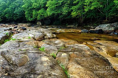 Photograph - Williams River On The Rocks by Thomas R Fletcher