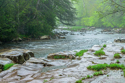 Photograph - Williams River Pouring Rain by Thomas R Fletcher
