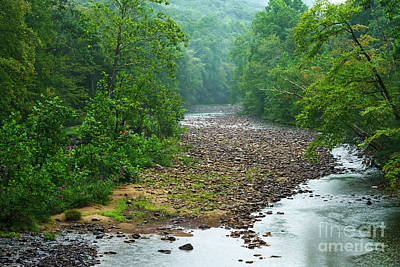 Photograph - Williams River With Pouring Rain by Thomas R Fletcher