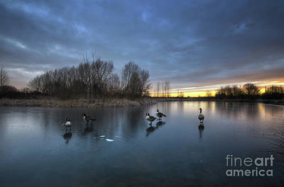 Photograph - Willington Lake 2.0 by Yhun Suarez