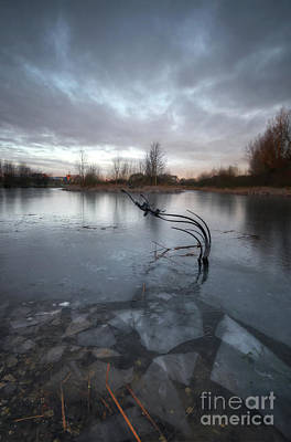 Photograph - Willington Lake  by Yhun Suarez