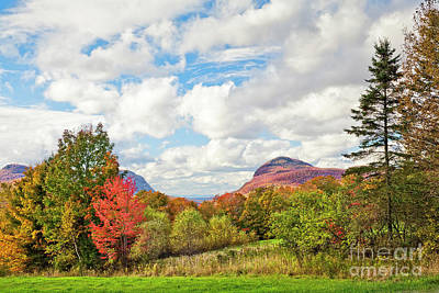 Photograph - Willoughby Region Fall by Alan L Graham