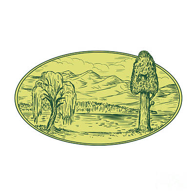 Willow And Sequoia Tree Lake Mountains Oval Drawing Art Print