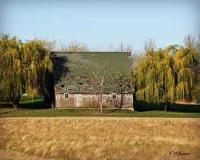 Photograph - Willow Barn by Kathy M Krause
