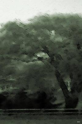 Willow Green Art Print by Debra     Vatalaro