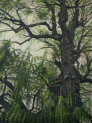 Painting - Willow Tree by Maria Rizzo