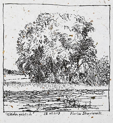 Photograph - Willow Trees In The Fields Romantic Ink Drawing by Martin Stankewitz